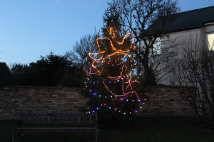 Fen Ditton Christmas Tree 001
