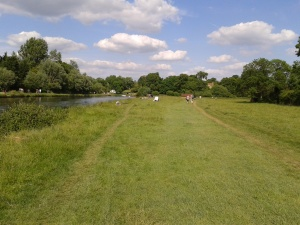 Ditton Meadows 12 June 2014