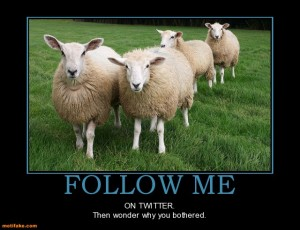 The Race sheep image twitter.motifake.com-