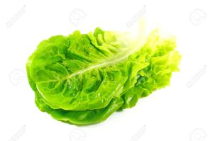 3820009-Lettuce-Leaves-www.123rf.com